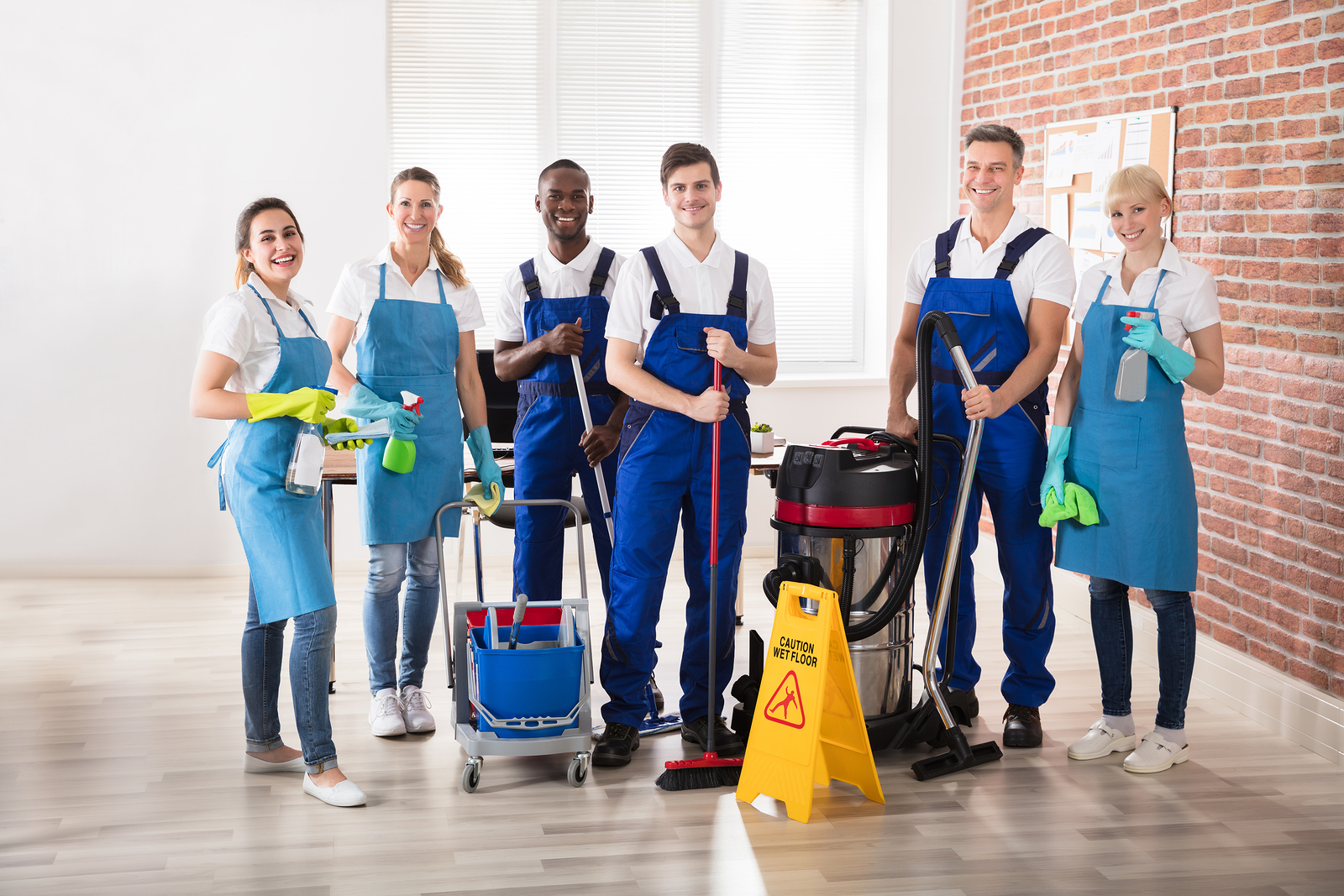 a group of professional cleaners